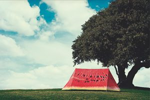 FieldCandy-Original-Explorer-WHATAMEL
